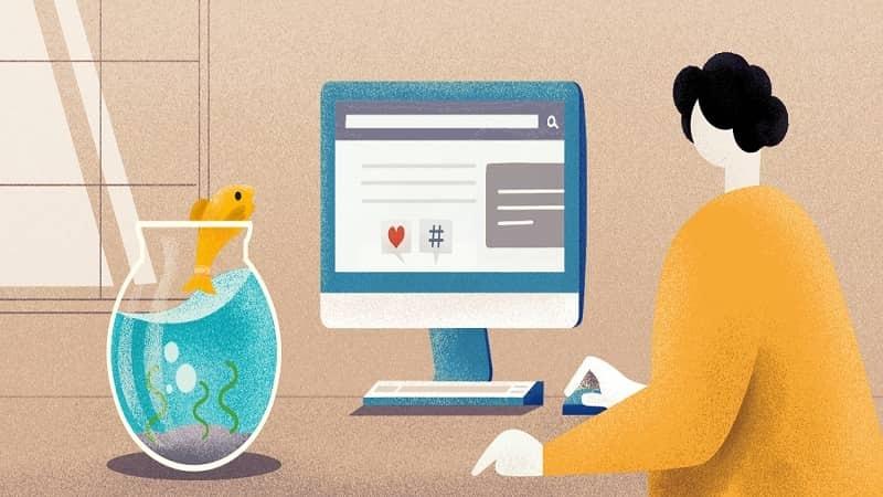 6 Techniques – How Live Chat Creates Better Landing Page